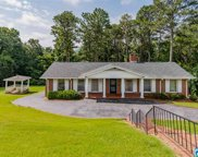 1525 Wellington Rd, Homewood image