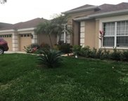 10254 Shadow Branch Drive, Tampa image