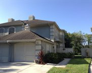 14116 Trouville Drive, Tampa image