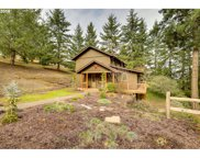 4932 MADRONA HEIGHTS  DR, Silverton image