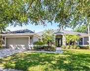 10608 Rochester Way, Tampa image