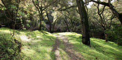 108 Hitchcock Cyn, Carmel Valley