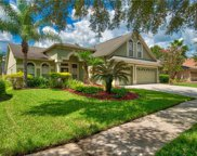 10216 Timberland Point Drive, Tampa image