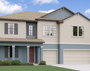 11701 Sunburst Marble Road, Riverview image