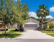 9318 Sapphireberry Lane, Riverview image