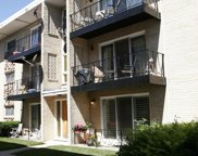 6815 North Olmsted Avenue Unit 103, Chicago image