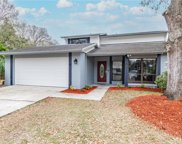 15704 Woodcrafters Place, Tampa image
