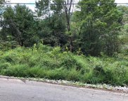 Lot 6 Goldscheitter Road, Buffalo Twp - BUT image