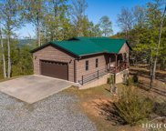 1303 Bobcat Mountain Road, Purlear image