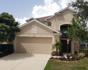 15615 Butterfish Place, Lakewood Ranch image