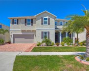 11427 Brighton Knoll Loop, Riverview image