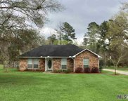 33776 Nancy Dr, Walker image