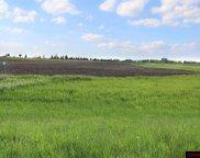 29967 Prairie Sage, Le Sueur image