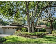 866 Pinewood Terrace W, Palm Harbor image