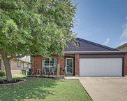 621 Hollyberry Drive, Mansfield image