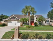 3213 Lake George Cove Drive, Orlando image