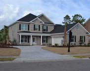 1024 Muscovy Place, Conway image
