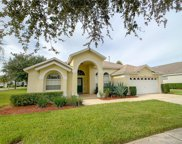 3123 Ibis Hill Street, Clermont image