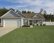 209 Family Farm Rd, Conway image