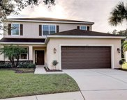 11421 Coventry Grove Circle, Lithia image
