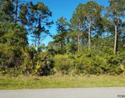 169 Ryberry Drive, Palm Coast image