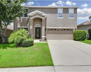 1138 Emerald Hill Way, Valrico image
