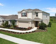 11309 Hudson Hills Lane, Riverview image