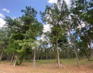 Lot 1 Winters Ranch Road, New Waverly image