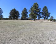 25259 Stagecoach Lane, Custer image