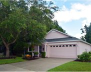 12301 Wood Sage Terrace, Lakewood Ranch image