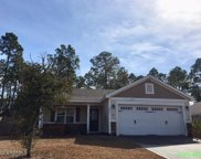 409 Blue Pennant Court, Sneads Ferry image
