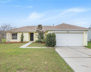 13117 Baneberry Court, Clermont image