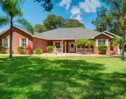 11305 Tralee Drive, Riverview image