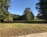 Lot 375 Wood Stork Dr., Conway image