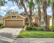6113 Gannetwood Place, Lithia image