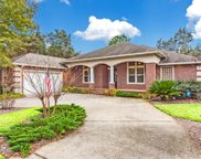4010 Sugarcane Creek Run, Niceville image