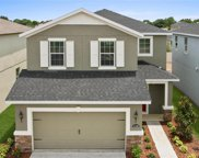 17425 Painted Leaf Lane, Clermont image