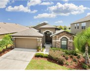 6702 Boulder Run Loop, Wesley Chapel image