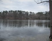 205 Tortoise Trail Unit #Lot 10, Batesburg image