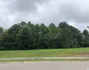 1817 Wood Stork Dr., Conway image