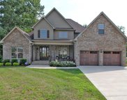 321 Cayce Dr, Springfield image