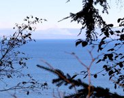 9999 Shimko Rd, Port Angeles image