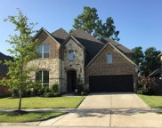 13819 Clusterberry, Frisco image