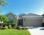 10214 Evergreen Hill Drive, Tampa image