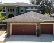 15725 Starling Water Drive, Lithia image