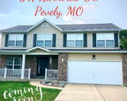 847 Riverview Dr., Pevely image
