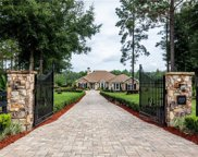24201 Greenwood Crossing, Eustis image