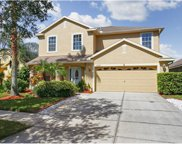 12207 Coldstream Lane, Tampa image