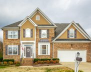 943 Cattails, Ooltewah image