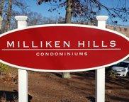 65 Milliken Ave Unit 13, Franklin image
